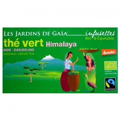 Infusettes de thé vert bio Himalaya Jardins de Gaïa v1