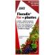 Floradix Fer et plantes Salus 250 ml v1