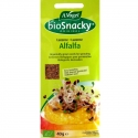 Graines de Luzerne ou Alfalfa à germer BioSnacky